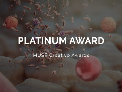 MUSE Creative Awards